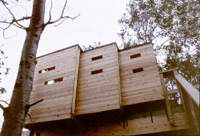 Monteyne Architecture | Projects - FortWhyte Treehouse - TREEHOUSE TELESCOPIC FORM AND WILDLIFE VIEWING BLINDS